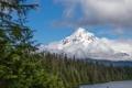 Картинка лес, снег, природа, озеро, гора