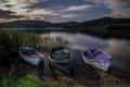 Картинка вода, озеро, камыши, лодки