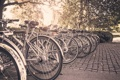 Картинка велосипед, город, парк, брусчатка, колесо, парковка