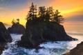 Картинка деревья, океан, скалы, рассвет, Oregon, USА, Carpenterville