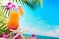 Картинка море, пляж, пальмы, коктейль, summer, beach, sea
