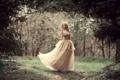 Картинка лес, девушка, платье, боке