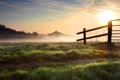 Картинка природа, роса, забор, утро