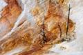 Картинка природа, скала, дерево, гора