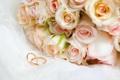Картинка цветы, розы, обручальные кольца