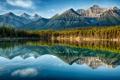 Картинка лес, небо, облака, деревья, горы, озеро, отражение