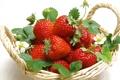 Картинка rojo, frutillas, hojas, canasta