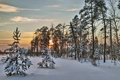 Картинка зима, закат, вечер
