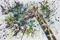 Картинка рисунок, жираф, кляксы, Вероника Мухаметшина