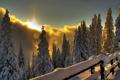 Картинка зима, лес, свет, горы