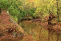 Картинка осень, лес, деревья, парк, США, речка, Paulding County