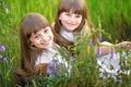 Картинка трава, цветы, девочки, улыбки
