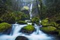 Картинка лес, деревья, река, камни, скалы, заросли, водопад