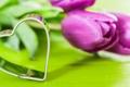 Картинка цветы, сердце, тюльпаны