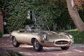 Картинка дерево, ягуар, кабриолет, классика, jaguar, передок, красивая машина