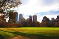 Картинка парк, листва, дома, вечер, нью-йорк