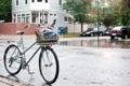 Картинка город, дождь, bike