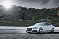 Картинка Audi, Пейзаж, quattro, Sportback, TFSI, 3.0