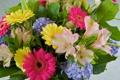 Картинка листья, лилии, букет, лепестки, герберы