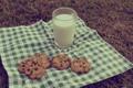 Картинка стакан, молоко, печенье, пикник