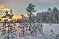 Картинка зима, пейзаж, снег