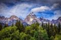 Картинка деревья, горы, Вайоминг, Wyoming, Гранд-Титон, Grand Teton National Park