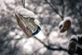 Картинка снег, фон, кеды