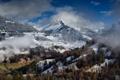 Картинка зима, облака, горы, туман, Альпы, леса