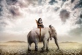Картинка девушка, пустыня, слон