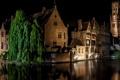 Картинка ночь, огни, дома, канал, Бельгия, Bruges