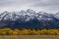 Картинка осень, лес, пейзаж, горы, природа