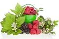 Картинка цветы, ягоды, малина, ежевика, ведёрко