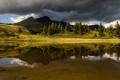 Картинка вода, деревья, горы, тучи, отражение, река, пасмурно