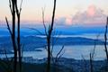 Картинка Веллингтон, Австралия, залив, вечер