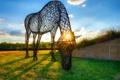 Картинка небо, трава, закат, лошадь, арт, двор, скульптура