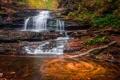 Картинка осень, лес, природа, водопад