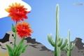 Картинка цветок, горы, кактус, Мексика, Mexico