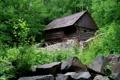Картинка Зелень, Природа, Фото, Деревья, Лес, Дом, Камни