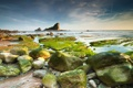 Картинка море, небо, водоросли, камни, скалы, отлив