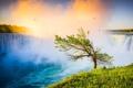 Картинка пейзаж, природа, дерево, водопад, ниагарский водопад