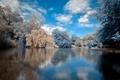 Картинка зима, вода, облака, снег, деревья, озеро, гладь