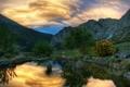 Картинка фотографии, вода, обои, деревья, бесплатные картинки, природа, пейзажи