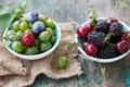 Картинка ягоды, сливы, крыжовник, вишни, черешни, шелковица