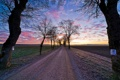 Картинка дорога, небо, трава, облака, деревья, пейзаж, закат