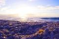 Картинка море, камни, ракушки