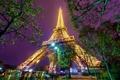 Картинка деревья, ночь, огни, люди, Париж, башня, вечер
