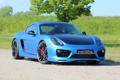 Картинка Porsche, Cayman, Speed, art, 981 S