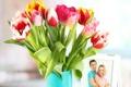Картинка тюльпаны, фото, цветы