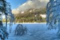 Картинка зима, облака, снег, деревья, холмы, солнечно, заснеженные