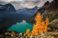 Картинка лес, горы, озеро, скалы